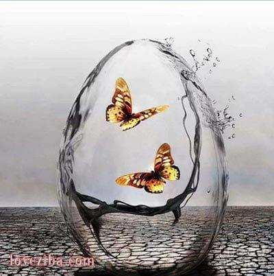 شعر بسیار زیبای آب آتش گرفت از حسن اسد شبدیز