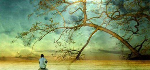 شعر بسیار زیبای دیکته روز جدید از محمد عبادی