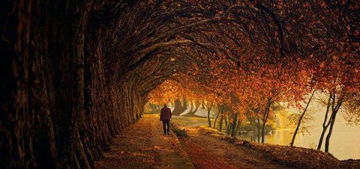 دوبیتی بسیار زیبا خواب من از مجتبی محمدیان