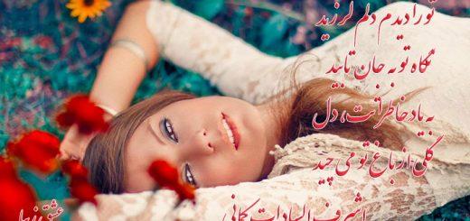 شعر تو را دیدم دلم لرزید از اشرف السادات کمانی