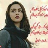 شعر بسیار زیبای غزلم قهر نکن از اشرف السادات کمانی