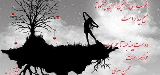 شعر زیبای خواب از محسن پیری و دکلمه لیلی آزاد