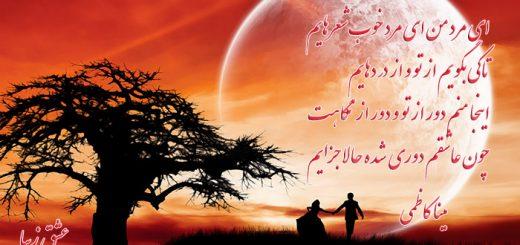 شعر زیبای ای مرد من همراه با دکلمه مینا کاظمی