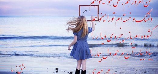 شعرهای و دلنوشته های زیبا از سیدمحمد میری