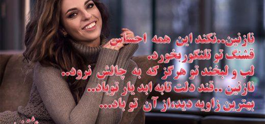 دلنوشته نازنین از محمد عبادی (سالک) دکلمه مدرس زاده