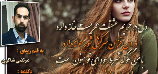 شعر حریم عشق از مرتضی شاکری دکلمه آرام اسحاقی (آرامش)