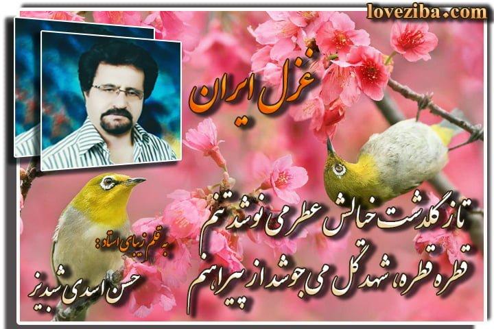 غزل ایران از استاد حسن اسدی شبدیز