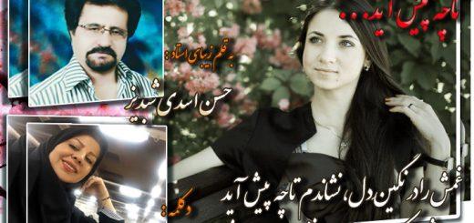 غزل تاچه پیش آید از حسن اسدی شبدیز دکلمه زهرا عالمی