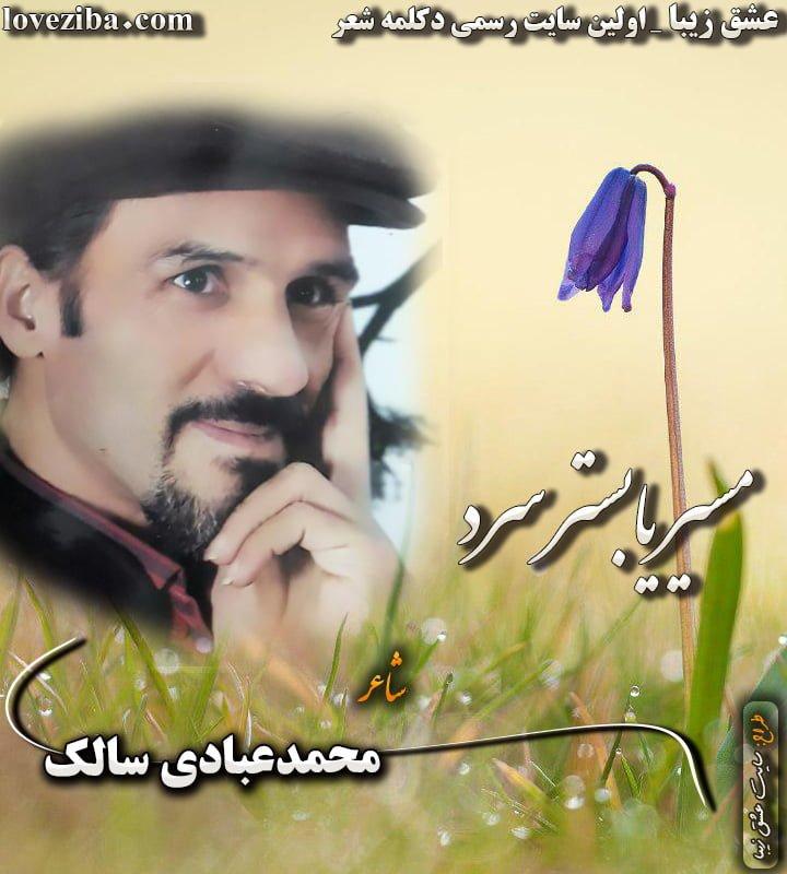 مسیر یابستر سرد شاعر محمد عبادی سالک