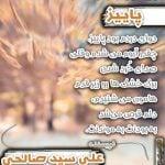 پاییز نویسنده علی سید صالحی
